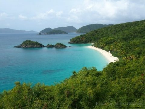 Visiting the US Virgin Islands with Kids: The Beach and Much More!
