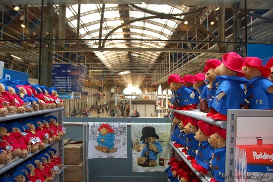 Wondering Where to see Paddington Bear in London? The Paddington Station store is a best bet