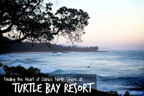 Finding-the-Heart-of-the-North-Shore-at-Turtle-Bay-Resort