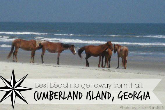 cumberland-island-georgia