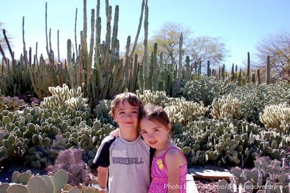 Desert-Botanical-Garden-Phoenix-Best-Activities-Trekaroo