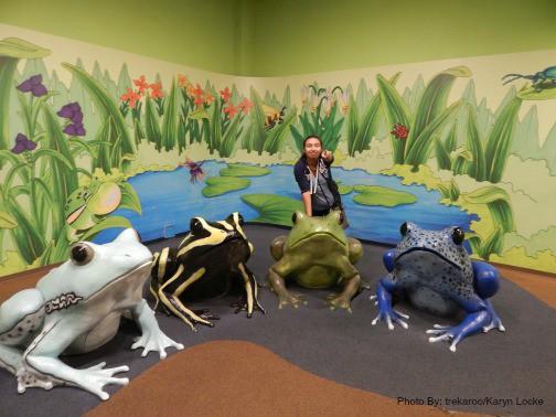 Family-friendly Newport Aquarium