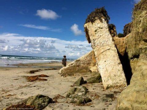 Family-Friendly Hidden San Diego: Del Mar