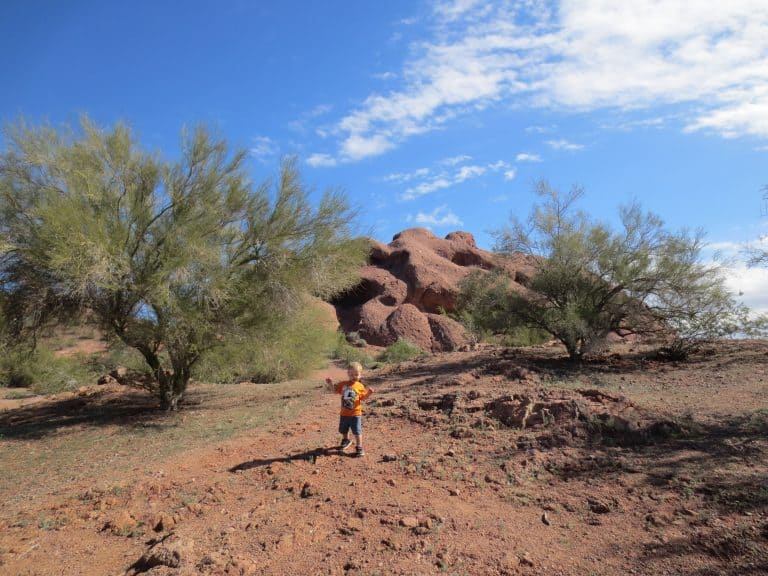 things-to-do-in-phoenix-with-kids-papago-park