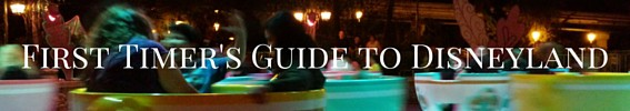 First Timer's Guide to Disneyland