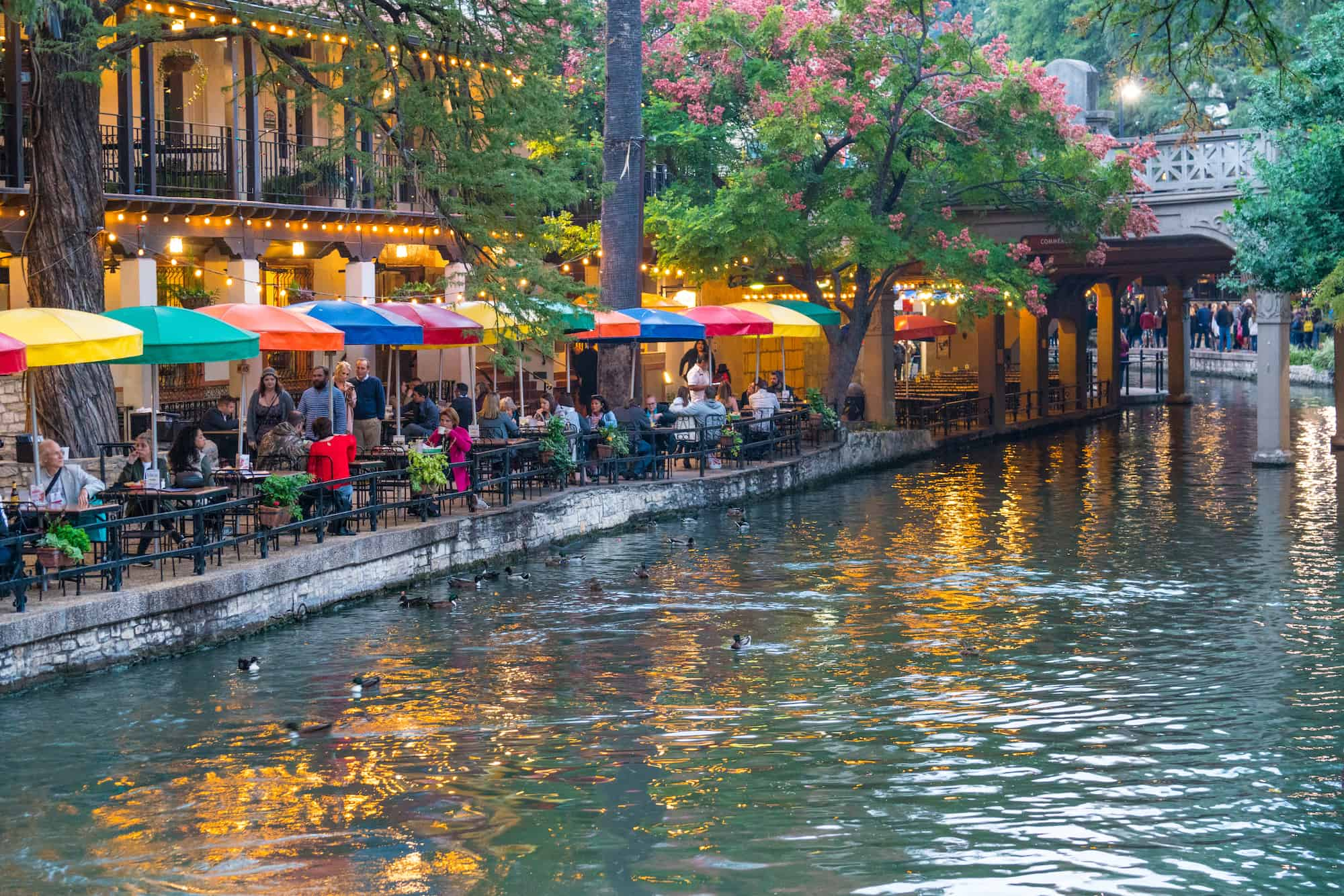 Top 10 Things To Do In San Antonio With Kids Trekaroo Blog