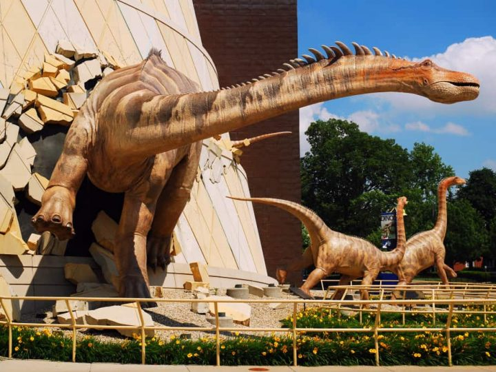 The Best Children's Museums in the USA