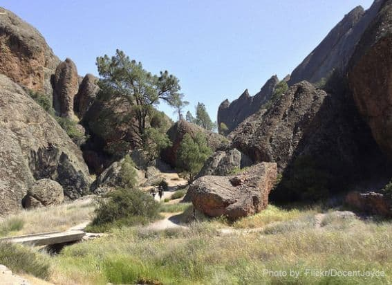 Balconies Cave loop is a good option for families looking to explore some talus caves inside Pinnacles