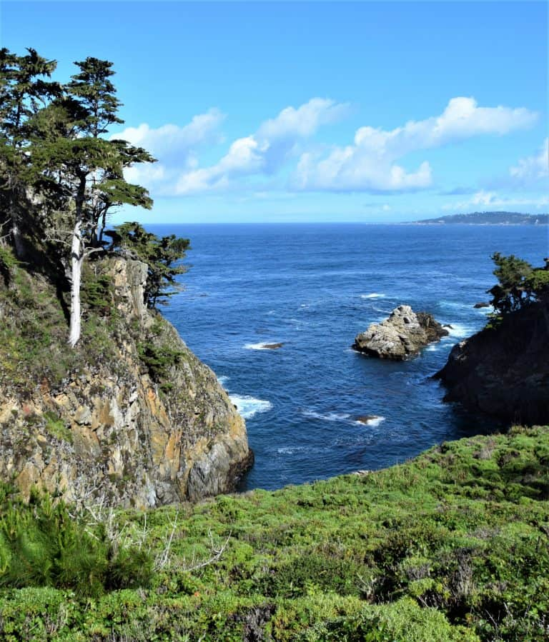 Point Lobos is a great place to stop on a California Road Trip
