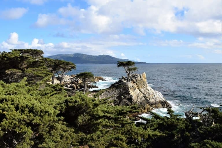 Scenic Viewpoint on the 17-Mile Drive