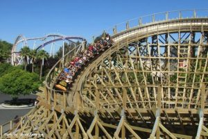 Great America Gold Striker
