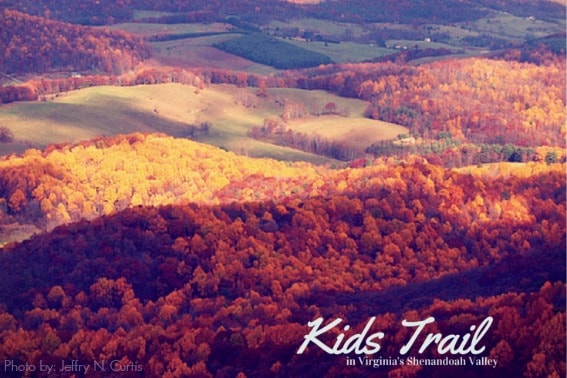 Kids Trail