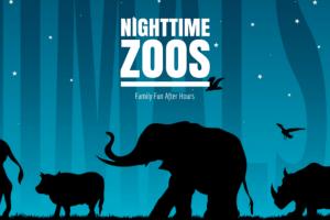 NIGHTTIME zoos 567