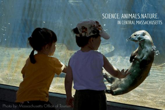 Science nature animals