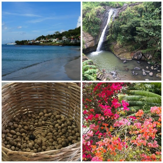 Sights of Grenada Collage
