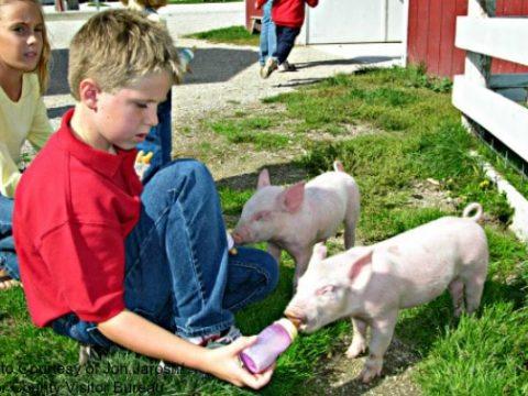 Vacation in Door County with Kids