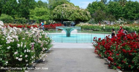 municipal-rose-garden-fountain-take 2