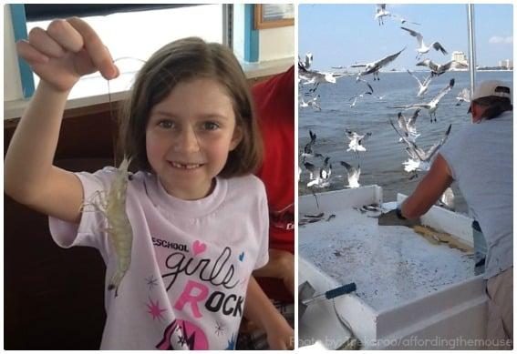 Biloxi Shrimping Tour Mississippi Gulf Coast