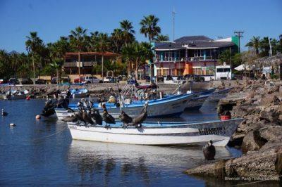 Mexico's Sea of Cortez Cruise with UnCruise Adventures 4