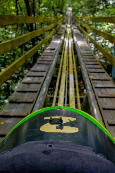 Don't miss the Jamaican bobsled adventure at Mystic Mountain