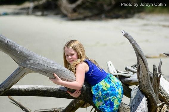 Driftwood Beach Jekyll Island GA