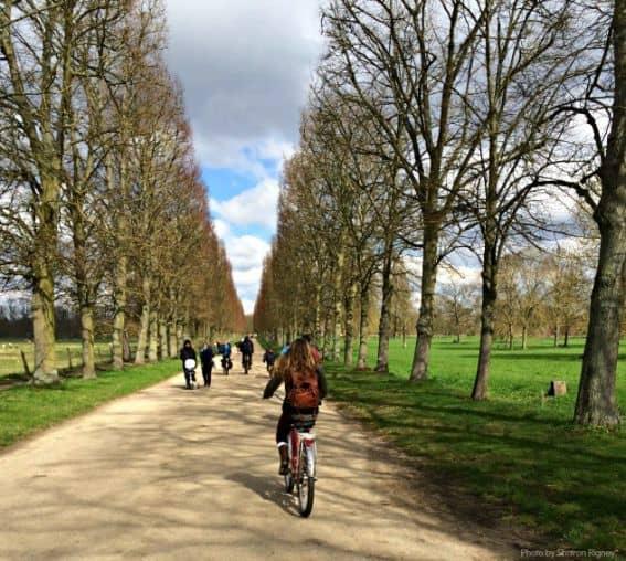 Fat Tire Paris Biking