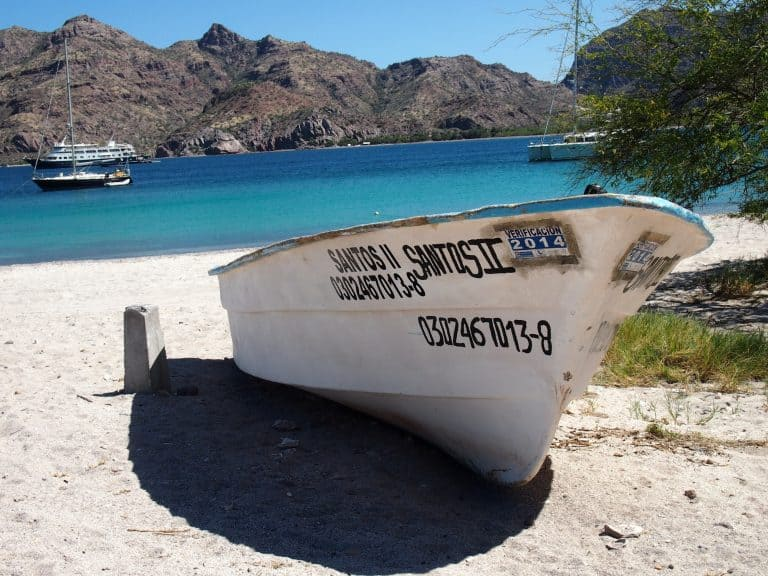 Uncruise Adventures review of the Sea of Cortez cruise Agua Verde