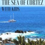 Mexico's Sea of Cortez Cruise with UnCruise Adventures 1