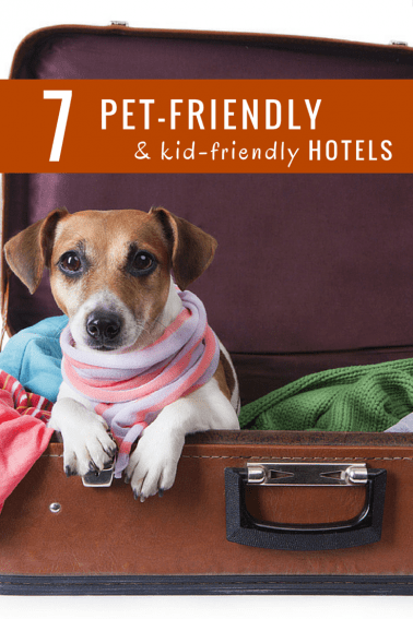 pet friendly hotel chains