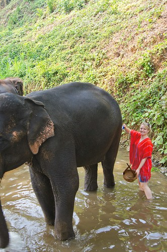 Unique Encounters with Animals and Wildlife for Families in Southeast Asia