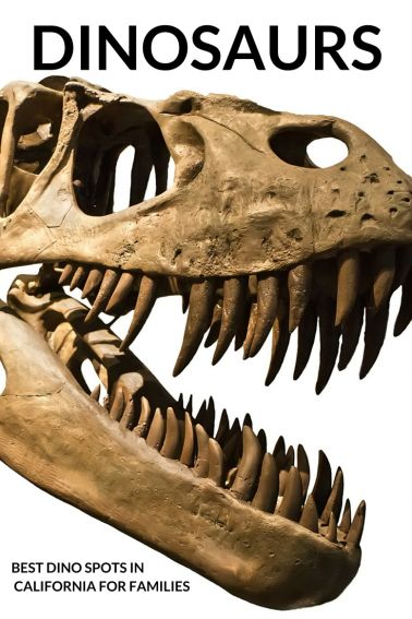 EXPLORE Dinosaurs with kids in Southern California