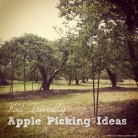 apple picking ideas