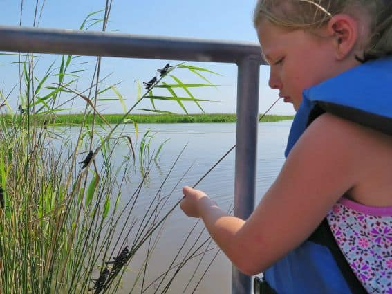 Exploring Mississippi's Gulf Coast with Kids