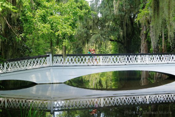 Magnolia Plantation Charleston Summer Spanish Moss Bridge