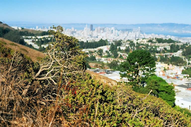 The 13 Best Views in San Francisco 13
