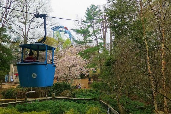 Busch Gardens Spring Roller Coaster Williamsburg