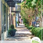 Fun Things to Do in Charleston, SC