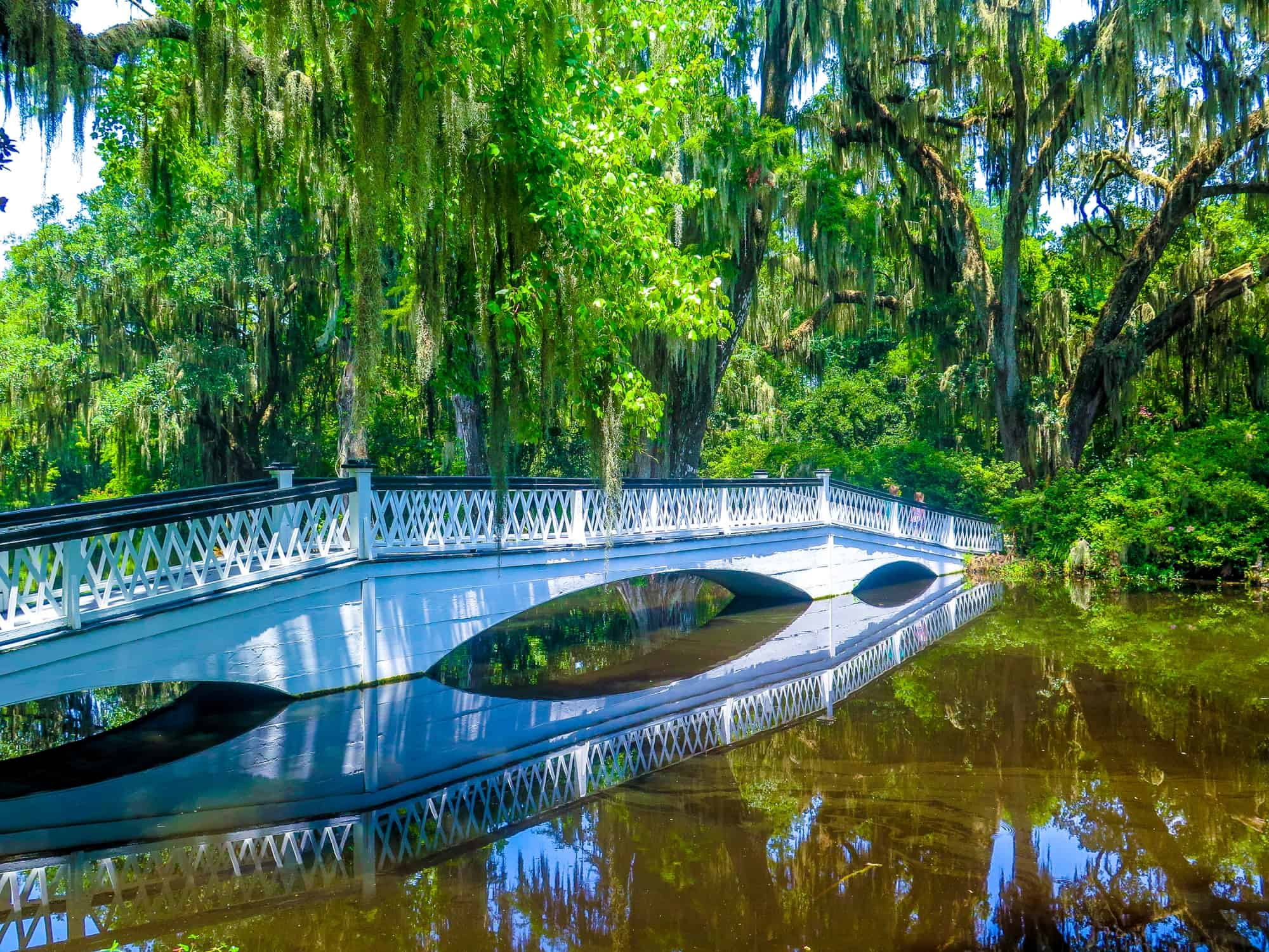 Fun Things to Do in Charleston, SC with Kids