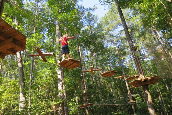 Treetop Junior Williamsburg Freedom Park