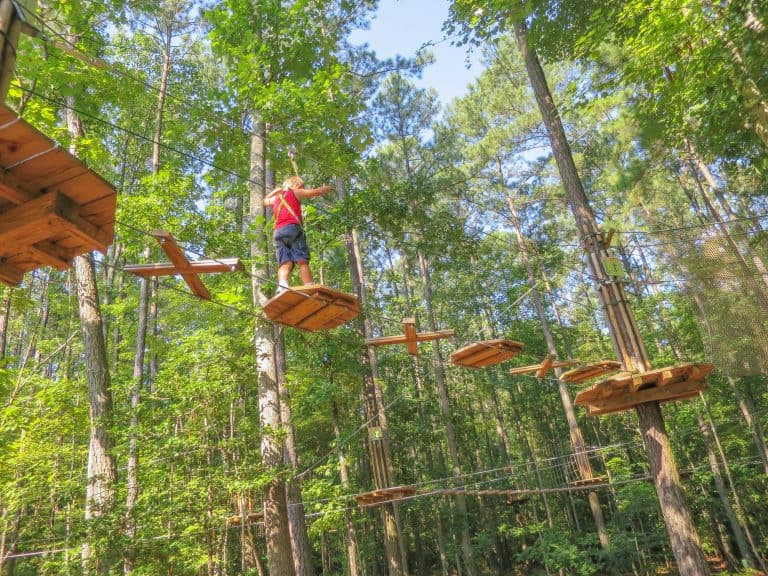 What to do in Williamsburg Virginia with kids Go Ape