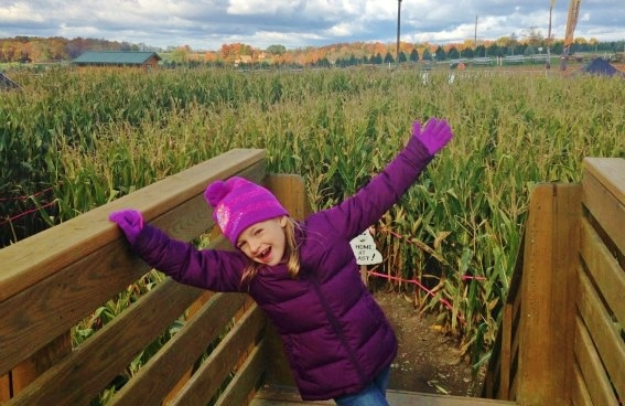 things to do in pennsylvania: the Roba Family Farms Corn Maze