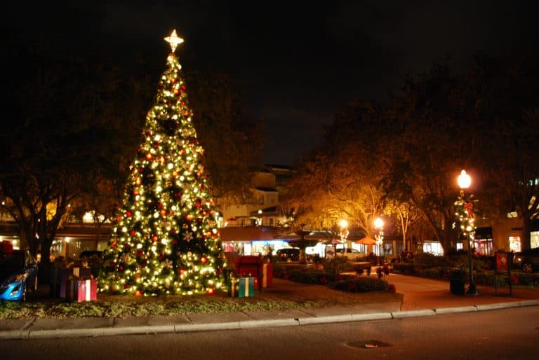 christmas-in-tampa-tree-lighting-by-flickr-gordon-tarpley