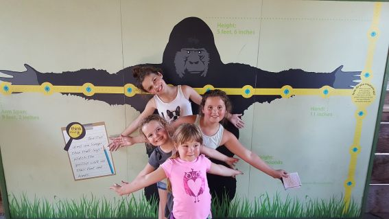 santa barbara zoo with kids