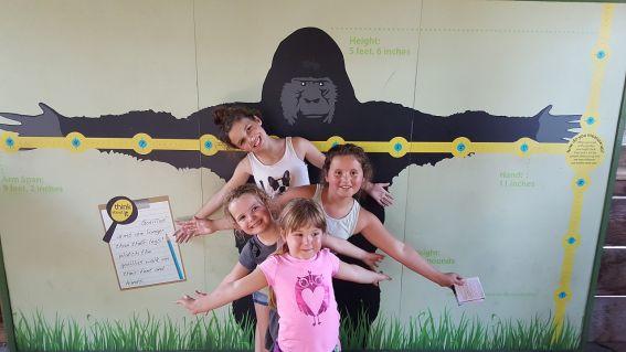 santa barbara zoo with kids
