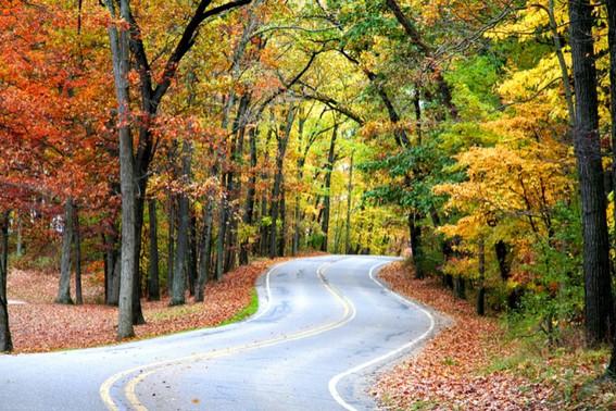Fall in Northern Pennsylvania-2