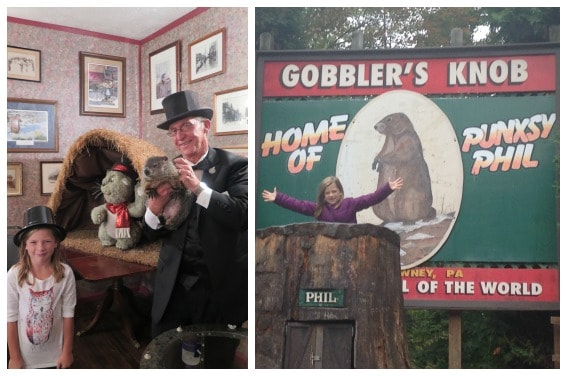 Punxsutawney Phil the Groundhog Gobbler's Knob Pennslyvania