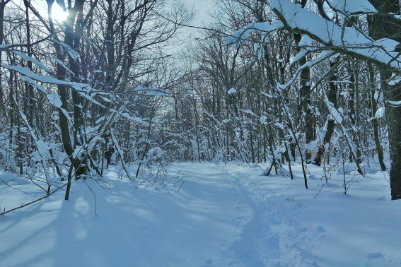 Snowshoeing Pennslyvania Seven Springs