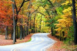Family Friendly places to celebrate fall in Northern Pennsylvania
