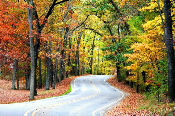 six things to do in pennsylvania in the fall with your family