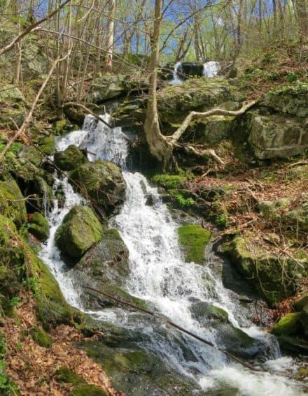 Waterfall Spring Shenandoah National Park Virginia